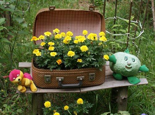 Ну ничего не видно из-за этого чемодана.