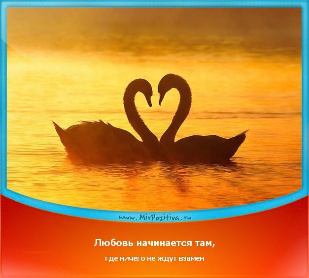 позитивчик дня: Любовь начинается там, где ничего не ждут взамен