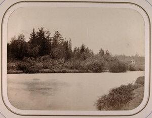 Вид на озеро Крупино-раздельный пункт Тихвинской системы.