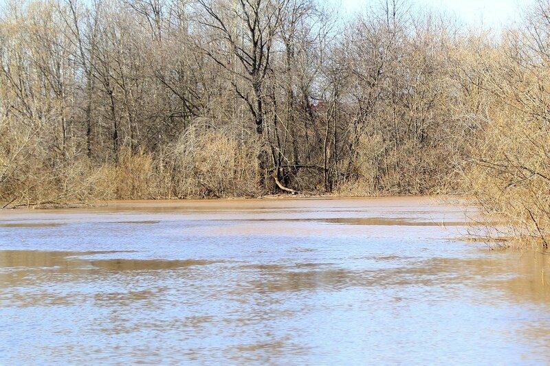 Здесь смешивается вода из Вятки в Волошке и вода из Просницы - Половодье 2015: первый заплыв
