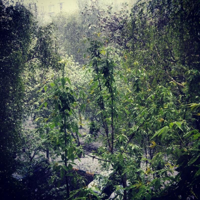 май 14-го. Снег в начале месяца