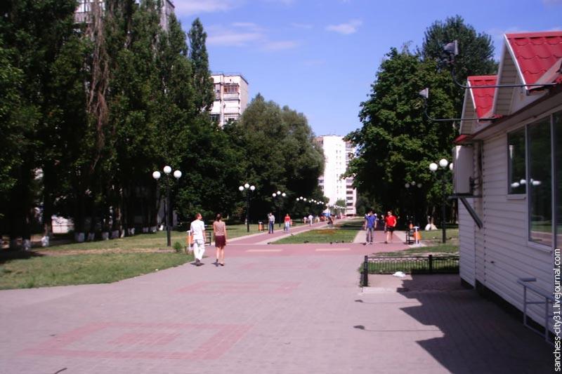 белгород жж
