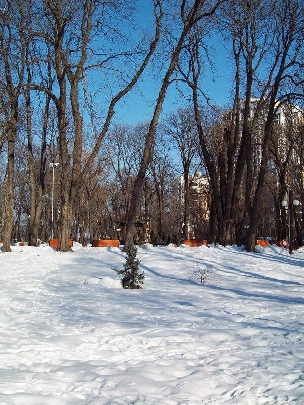 Заснеженный газон Мариинского парка