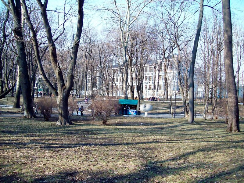Газон Мариинского парка