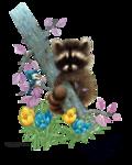 LJH_GG_raccoon and bird0918.png