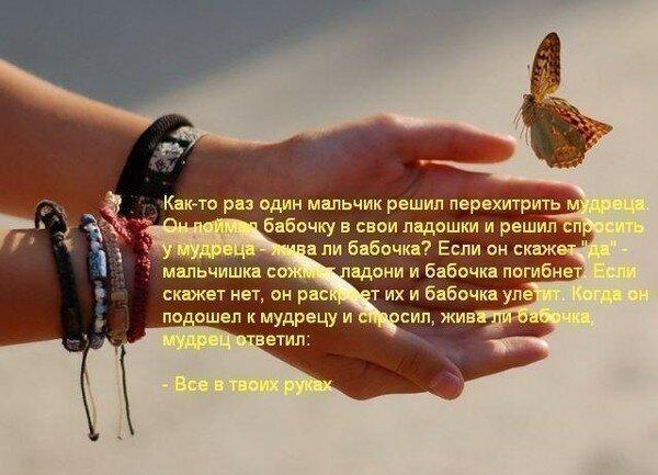 Стих мое счастье на руках моих