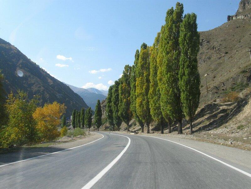 Транскавказская автомагистраль, Алагирское ущелье летом (IMG_9657.JPG)