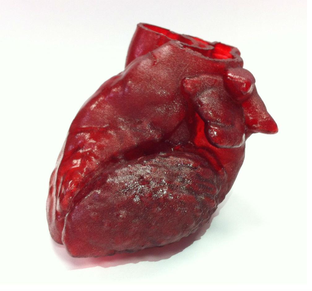 сердце с 3D-принтера