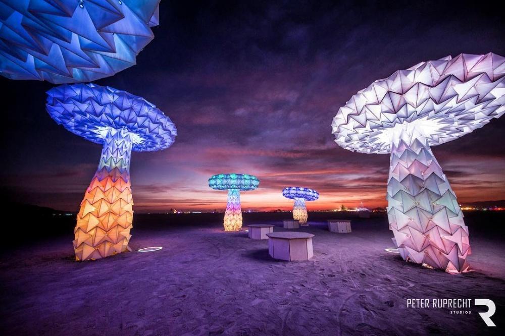 Люминесцентные движущиеся грибы. Люди могут взаимодействовать сгрибами ивлиять нато, как о