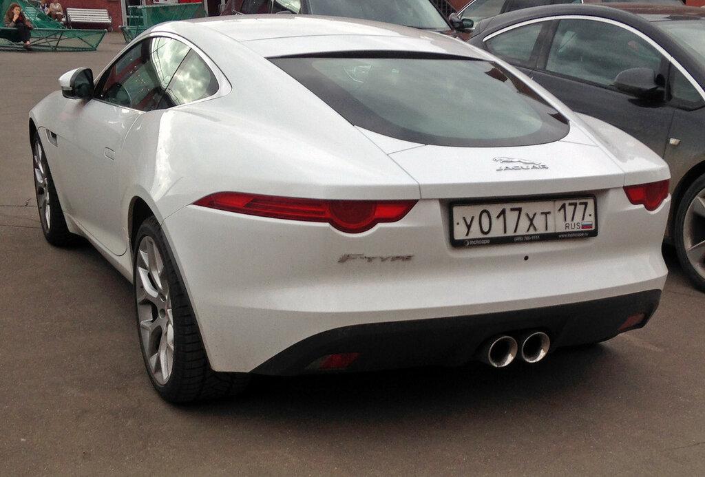 jaguar-back-IMG_4513.JPG