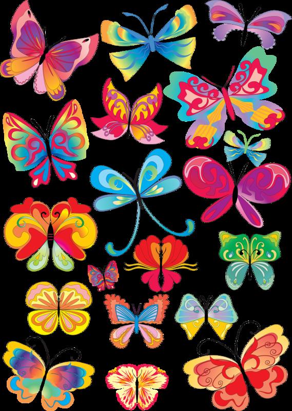 Бабочки векторные