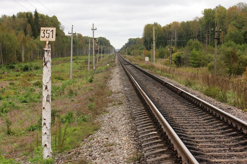 Берёзовый километровый столб 351-350 км на перегоне Земцы - Подсосенка