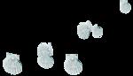 feli_syd_pearl shells embellie.png