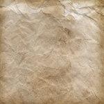 NLD I Sea You Paper (12).jpg
