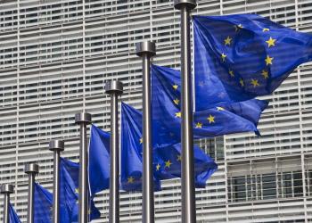 ЕС не признаёт результаты референдумов на востоке Украины