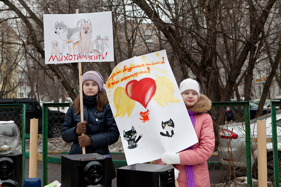 догхантеры Москва