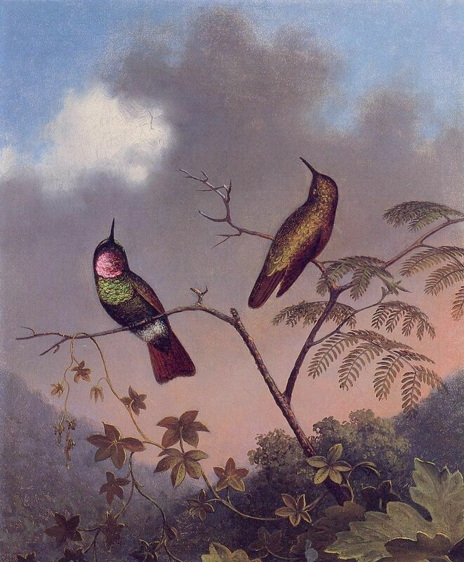 Martin Johnson Heade (14).jpg
