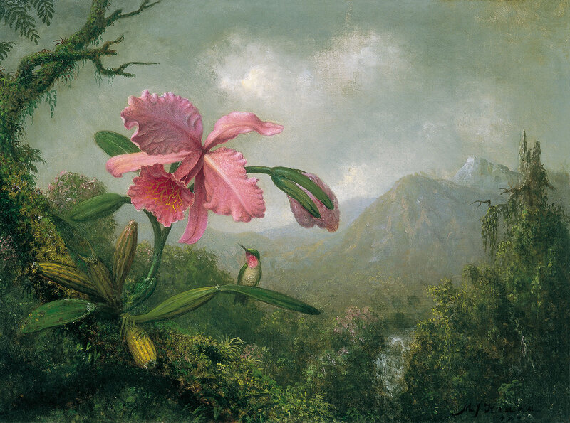 Martin Johnson Heade (13).jpg