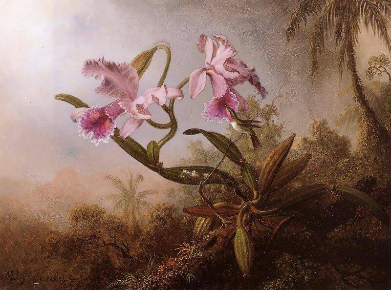 Martin Johnson Heade (18).jpg
