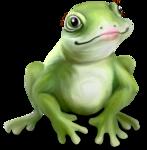 NLD Frog Princess sh.png