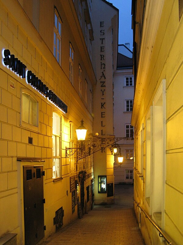 Vienna, evening