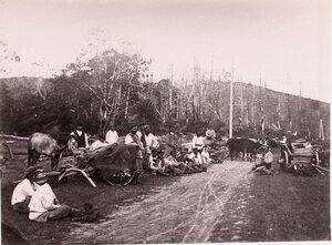 Поселенцы, едущие с грузом, во время отдыха в пути.