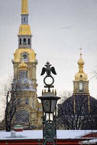 Про фонарик (Петербург, Петропавловский собор, птица, фонарь)