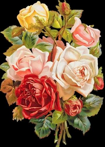 """Предпросмотр схемы вышивки  """"Букет роз """" ."""