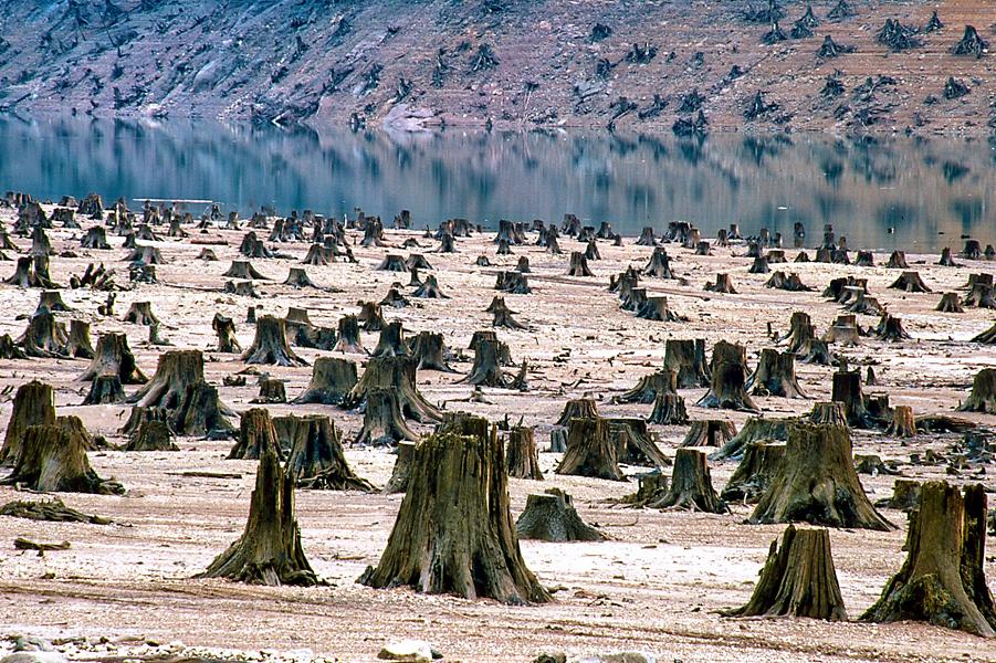 Экология.png