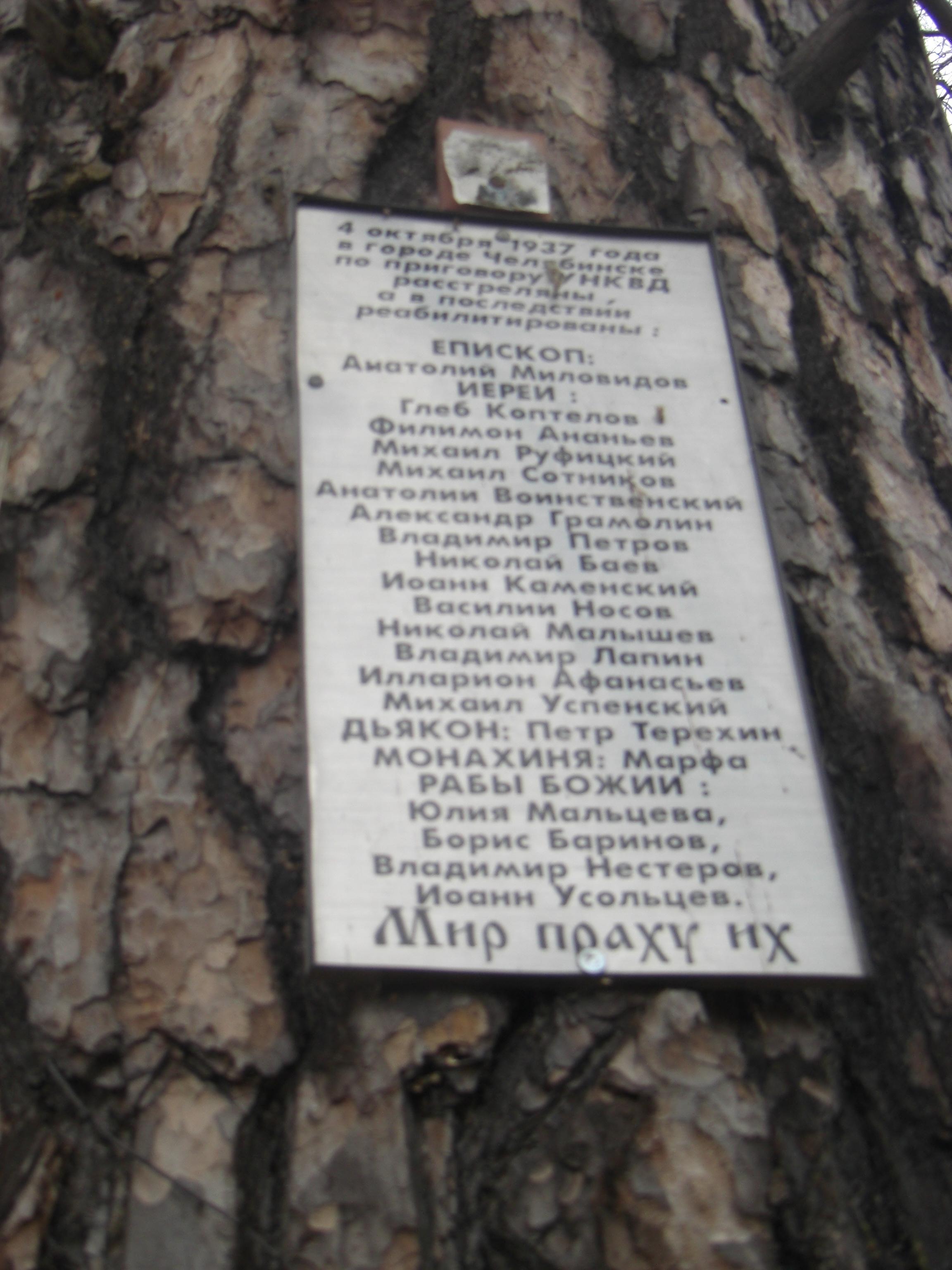 Табличка на дереве (13.05.2014)
