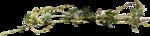 Скрап -набор «Весне дорогу» 0_7485c_ac5b784e_S