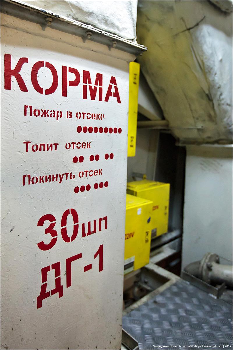 БДК Цезарь Куников