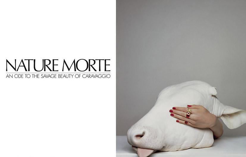 Барбара Фиальо / Barbara Fialho by Brigitte Niedermair in CR Fashion Book #3 / Nature Morte