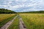 Залесское поле