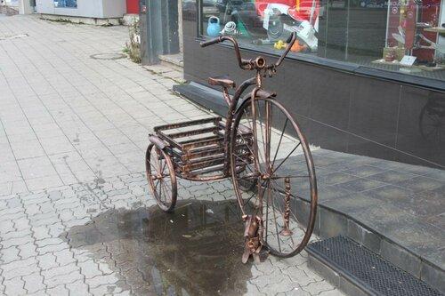 вело-тачка и собачка