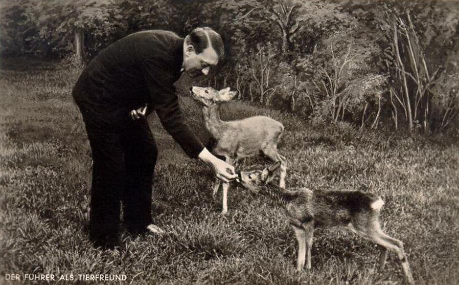 (人文历史)希特勒的罕见照片--从天真孩子到杀人魔鬼! - 清风细雨 - 清风细雨