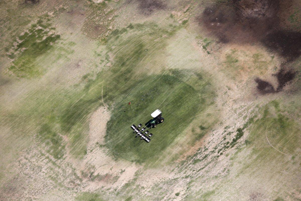 10. Трактор собирает мячи для гольфа на выгоревшем поле в Палм-Спрингс. Согласно новым правилам штат