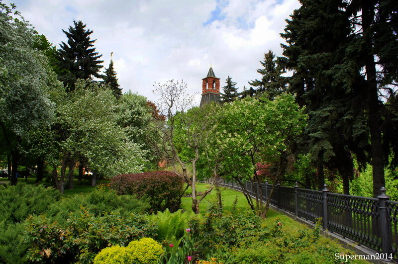 Весна в Московском кремле