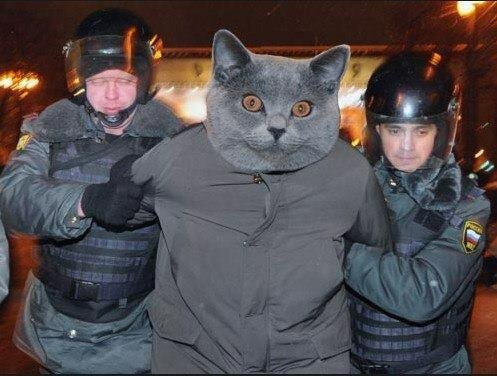Мы передадим его Дмитрию!