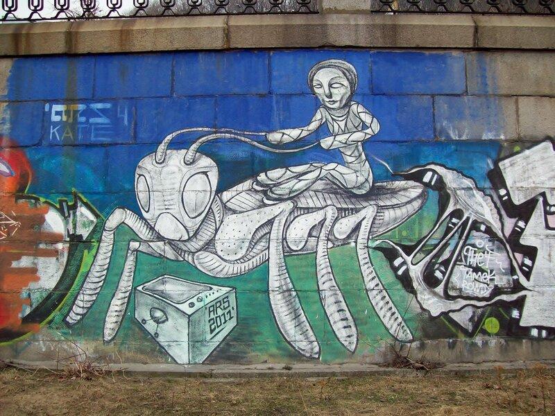 Граффити Верхом на таракане