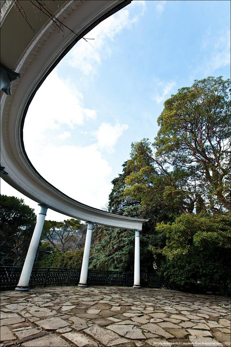 Пасмурное утро в ботаническом саду