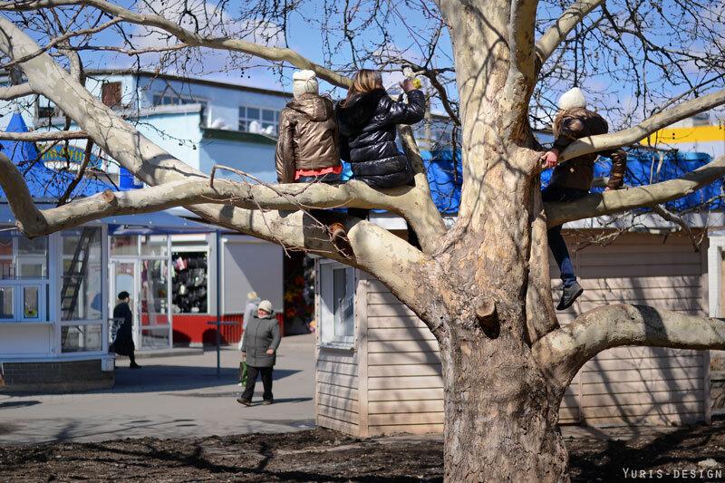 весна в Бердянске фото