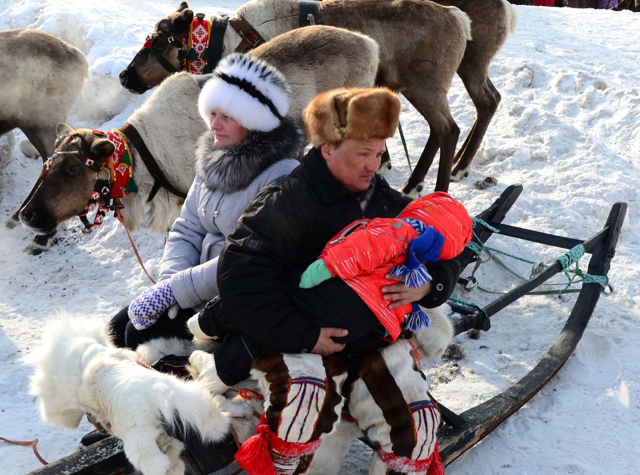 фото оленевода с семьей публикует завидной периодичностью