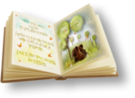 NLD Book illustrate sh.png