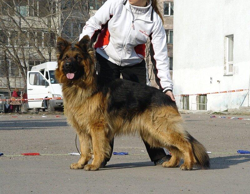 http://img-fotki.yandex.ru/get/6106/159887283.0/0_72baa_78afb708_XL.jpg