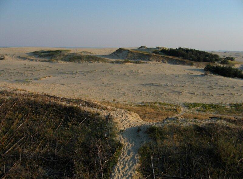 Куршская коса. Пески и дюна Старосельская