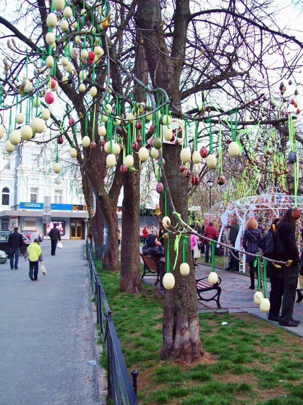 киев писанки на деревьях