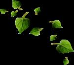 """Шикарный летний скрап-набор..""""Зеленая симфония"""" 0_752b4_c58ec57c_S"""