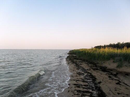 Утро у моря