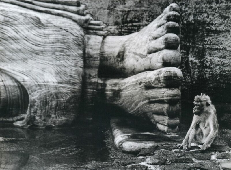 Wolf Suschitzky.Feet of Buddha Statue, Gal Vihara, Sri Lanka